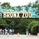 Bronx - Estados Unidos
